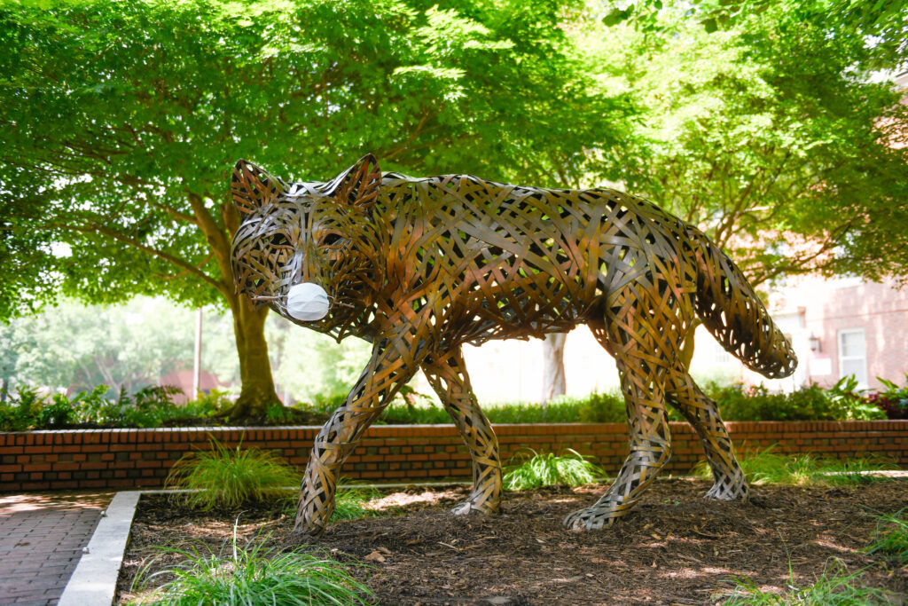 One of the copper wolves at Wolf Plaza wears a face mask during the COVID 19 pandemic.